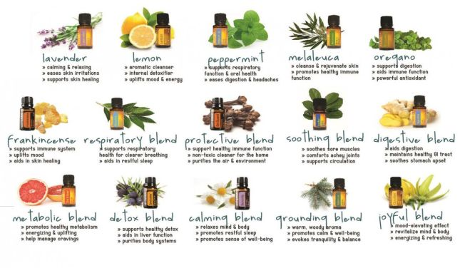 Essential Oil Division