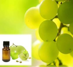 Essential Oil Division Grapeseed Oil 1 grapeseed_oil